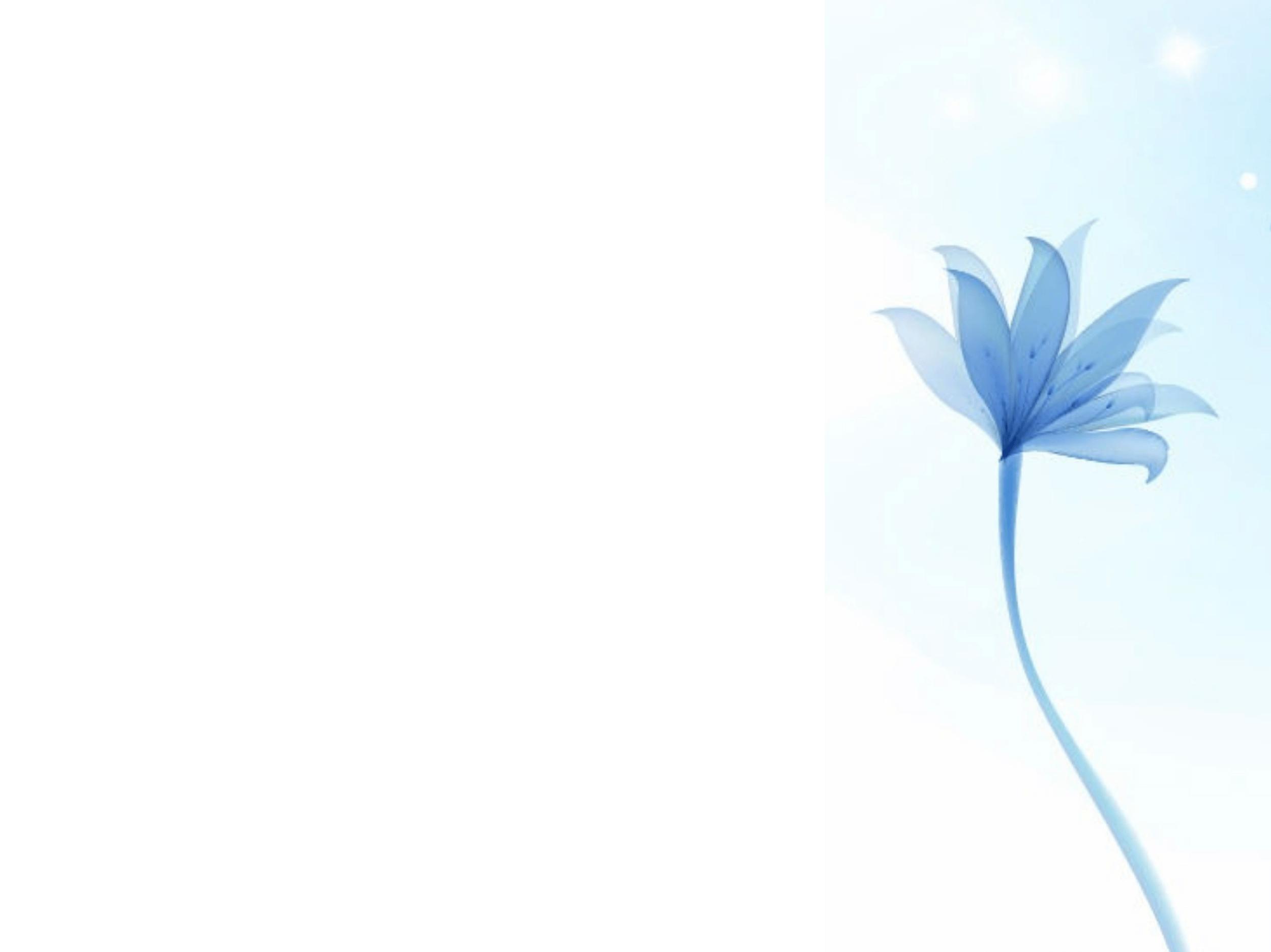 Hintergrund Blume Rechts